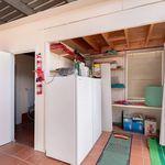 3 bedroom house in Torrens