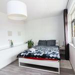 Room of 145 m² in Utrecht