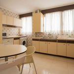Room of 150 m² in Valencia
