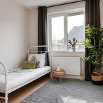 Huis (120 m²) met 7 slaapkamers in Tilburg