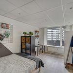 Appartement (88 m²) met 3 slaapkamers in Capelle aan den IJssel