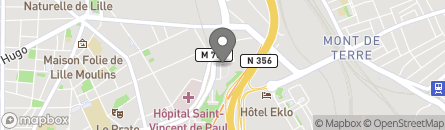 81 RUE GEORGES CLEMENCEAU, 59000 LILLE