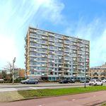 Kamer van 12 m² in Rotterdam