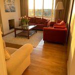 Kamer van 15 m² in Scheveningen