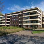 Appartement (100 m²) met 3 slaapkamers in Breugel