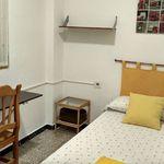 Habitación de 20 m² en Elche