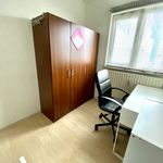 Room of 12 m² in Rotterdam