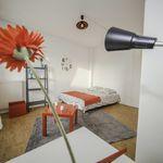 Room of 16 m² in Strasbourg