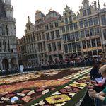 Chambre de 20 m² à Brussels