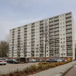 3 bedroom apartment of 78 m² in Amsterdam