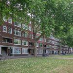 Appartement (101 m²) met 5 slaapkamers in Rotterdam