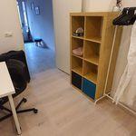 Room of 90 m² in Schiedam