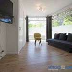 Appartement (90 m²) met 5 slaapkamers in Rotterdam