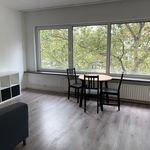 Kamer van 33 m² in Rotterdam