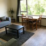 Room of 93 m² in Amsterdam