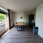 Huis (120 m²) met 5 slaapkamers in Waalre