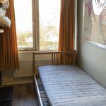 Room of 6 m² in Amsterdam