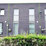 Huis (113 m²) met 3 slaapkamers in Eeklo