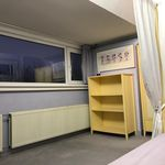 Room of 12 m² in The Hague