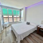 1 dormitorio apartamento de 48 m² en Alacant