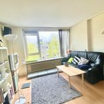 Room of 75 m² in Rotterdam