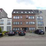 3 chambre maison de 108 m² à HERENTALS