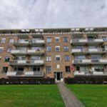 Appartement (74 m²) met 3 slaapkamers in Arnhem