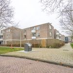 1 bedroom apartment of 12 m² in Amsterdam