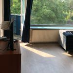 Room of 88 m² in Amsterdam